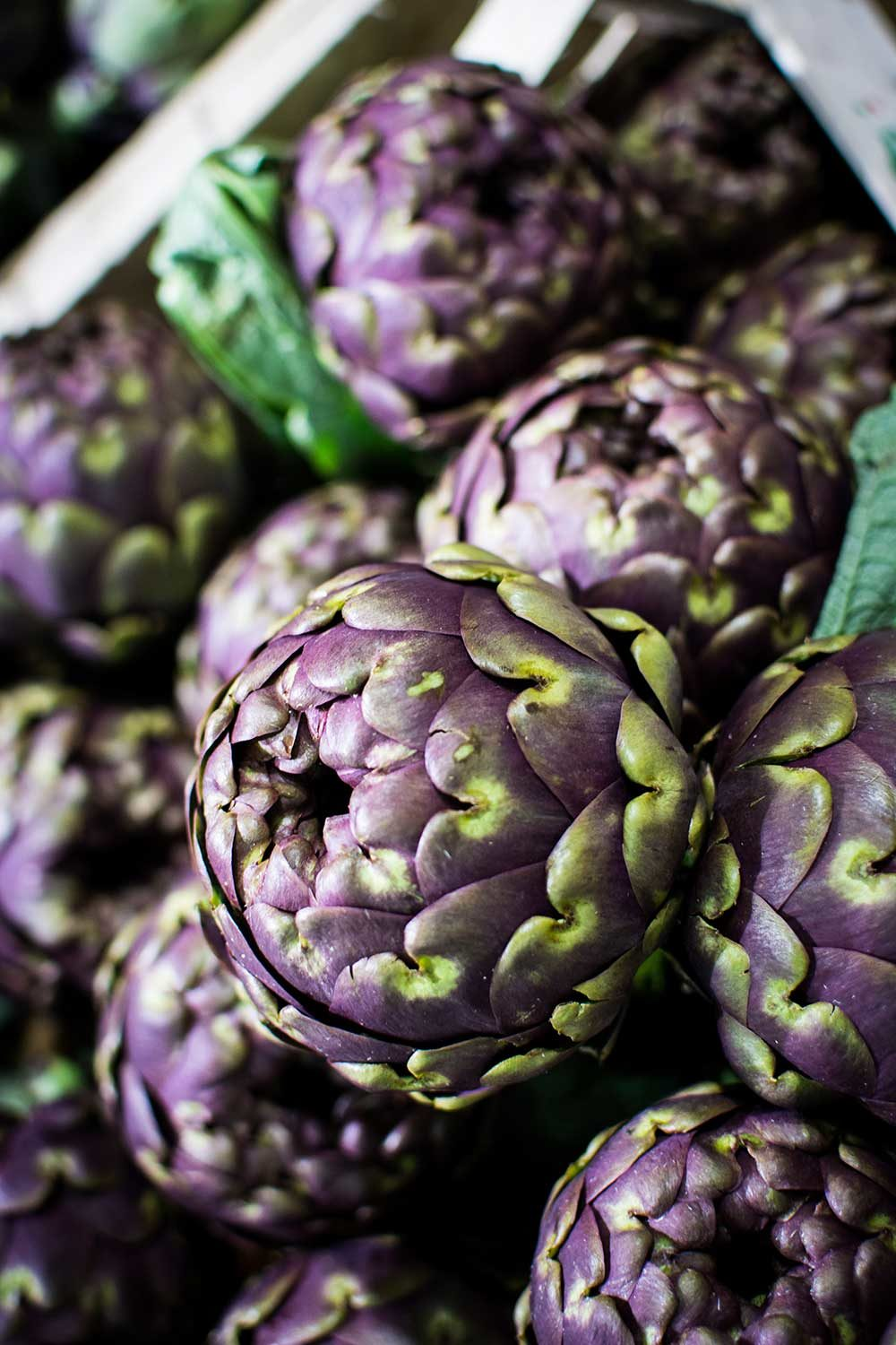 Artichoke has bile enhancing capabilities through stimulating the gallbladder
